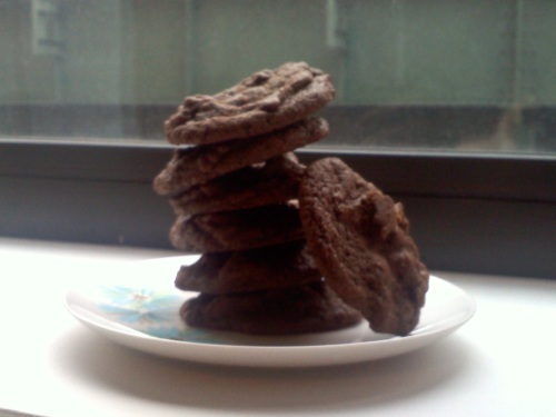 LaurenFoodE double chocolate cookies